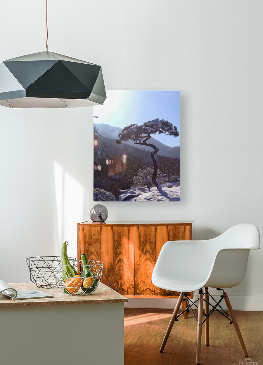 Tree in Snow  HD Metal print with Floating Frame on Back