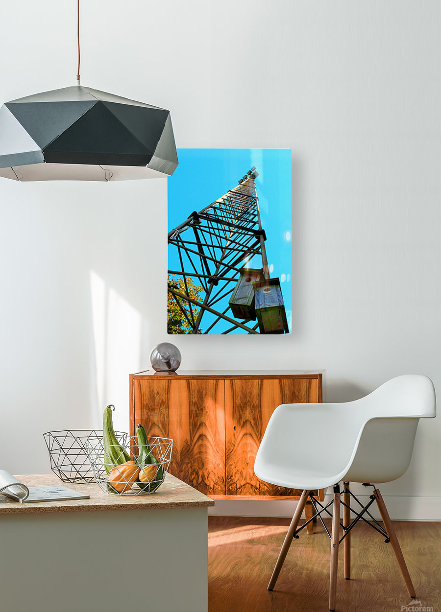 7856499  HD Metal print with Floating Frame on Back
