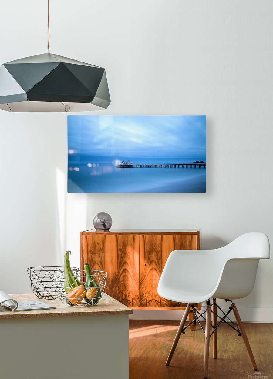 Frozen  HD Metal print with Floating Frame on Back