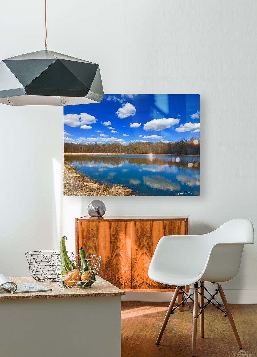 Pond Reflections  HD Metal print with Floating Frame on Back
