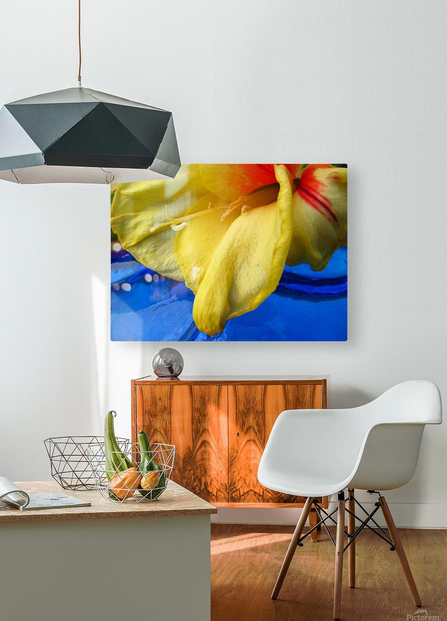 Meditation Inside  HD Metal print with Floating Frame on Back