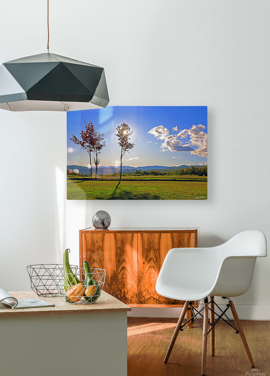 Jericho Meadow  HD Metal print with Floating Frame on Back