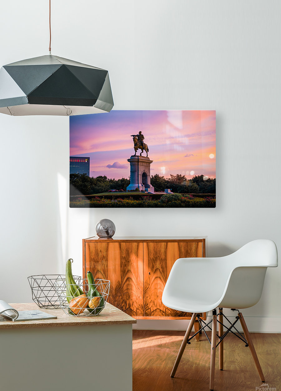 Sam Houston Herman Park  HD Metal print with Floating Frame on Back