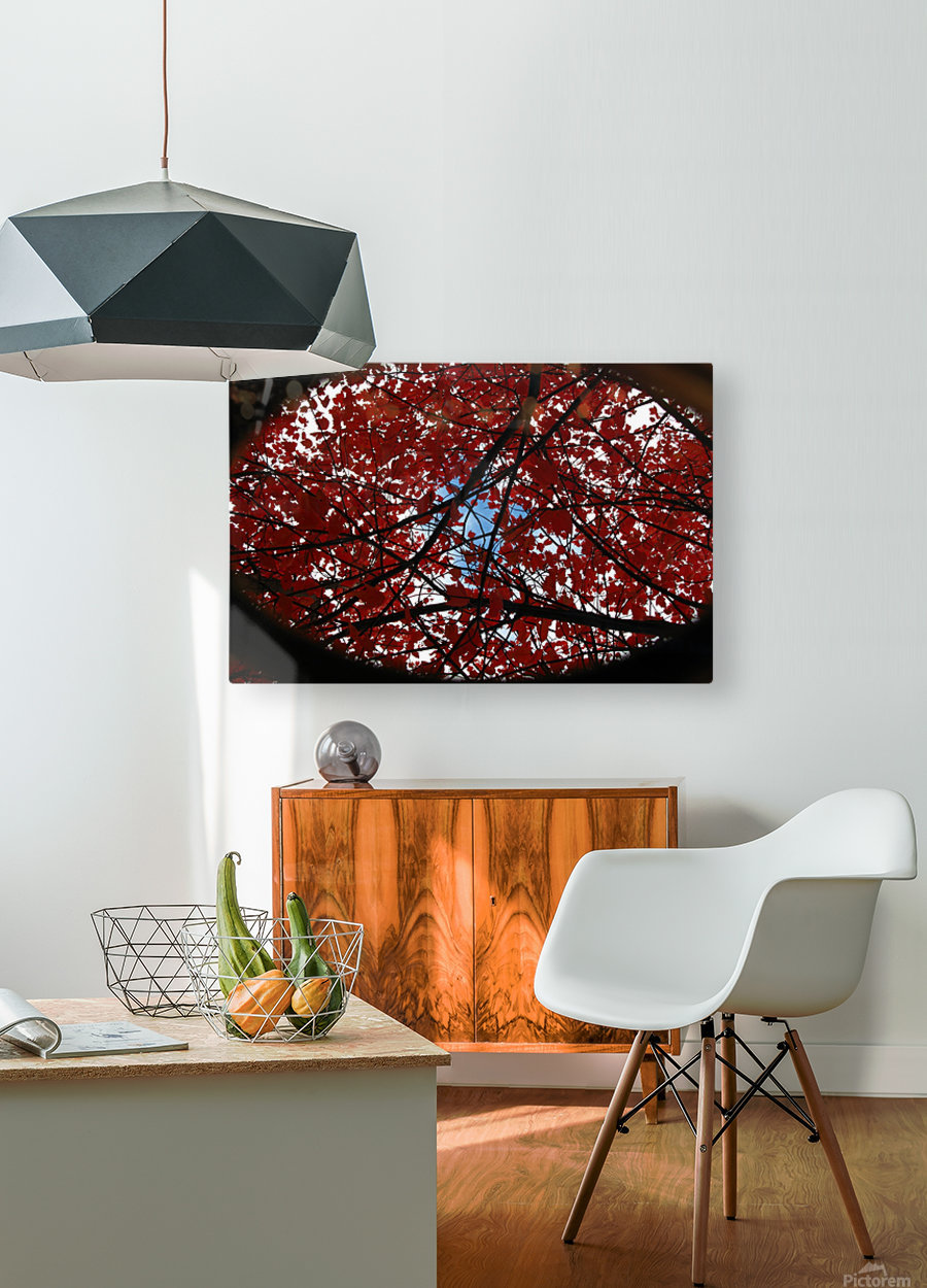 Opening  HD Metal print with Floating Frame on Back