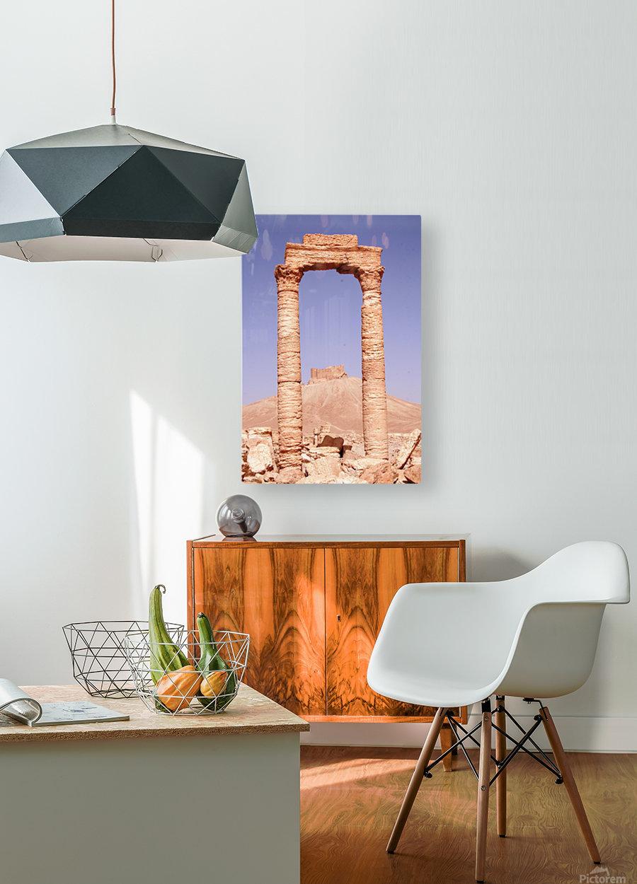 Palmyra  HD Metal print with Floating Frame on Back