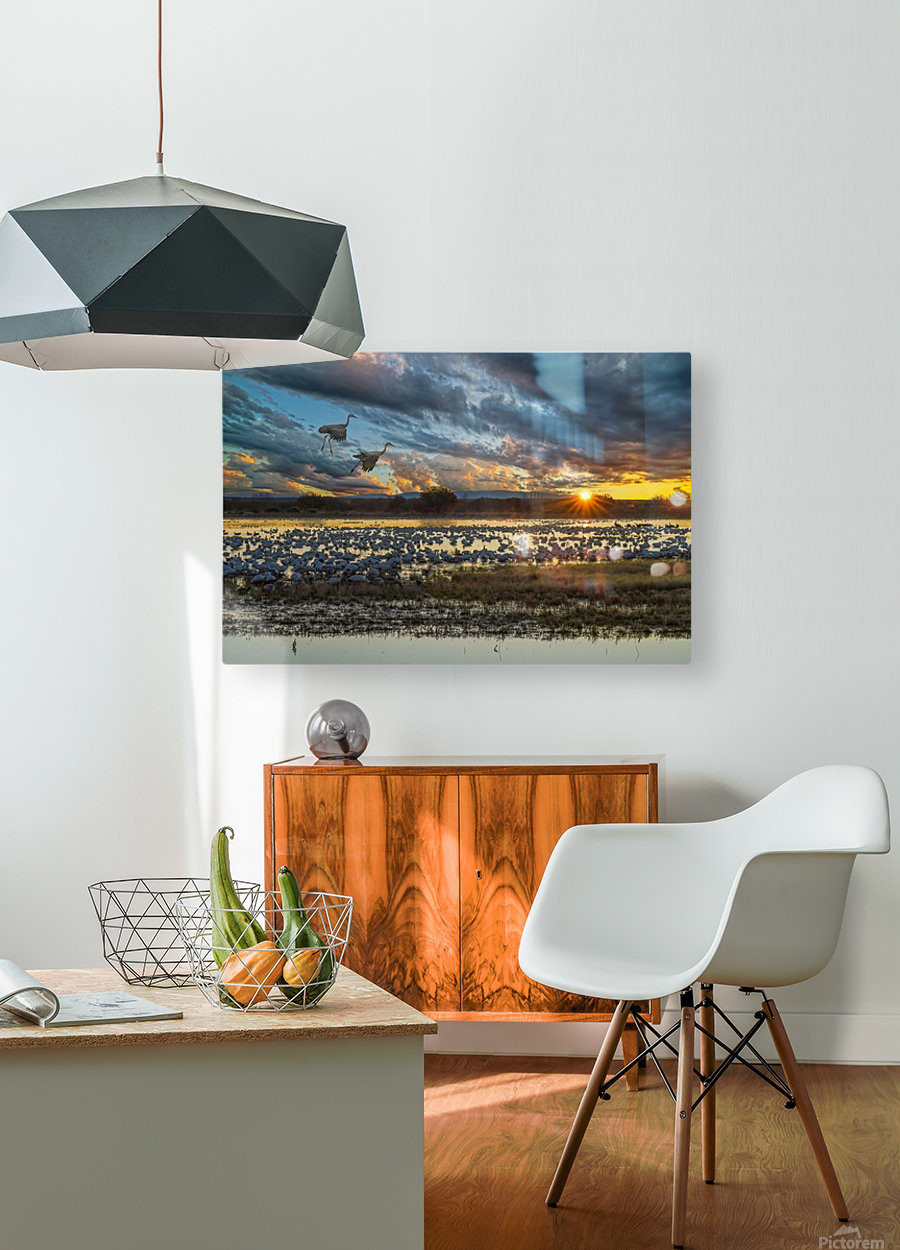 Sunrise at the Bosque  HD Metal print with Floating Frame on Back