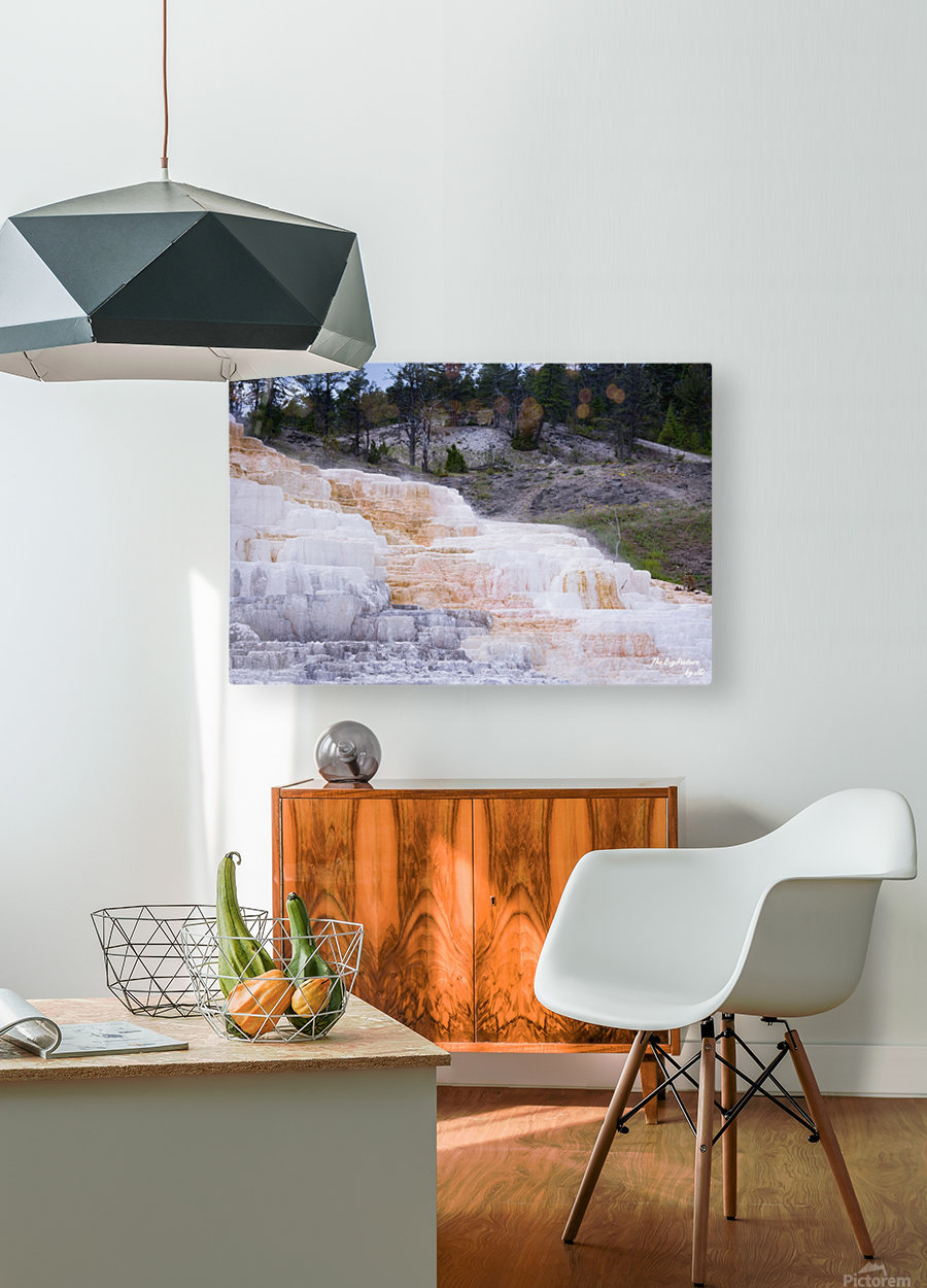 Yellowstone Lower Terrace  HD Metal print with Floating Frame on Back