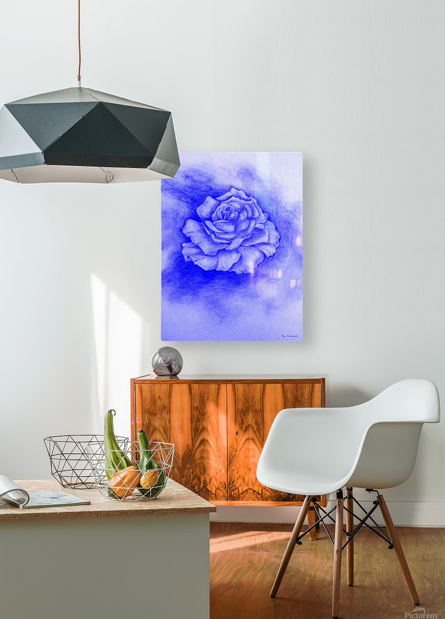 Celestial Rose  HD Metal print with Floating Frame on Back