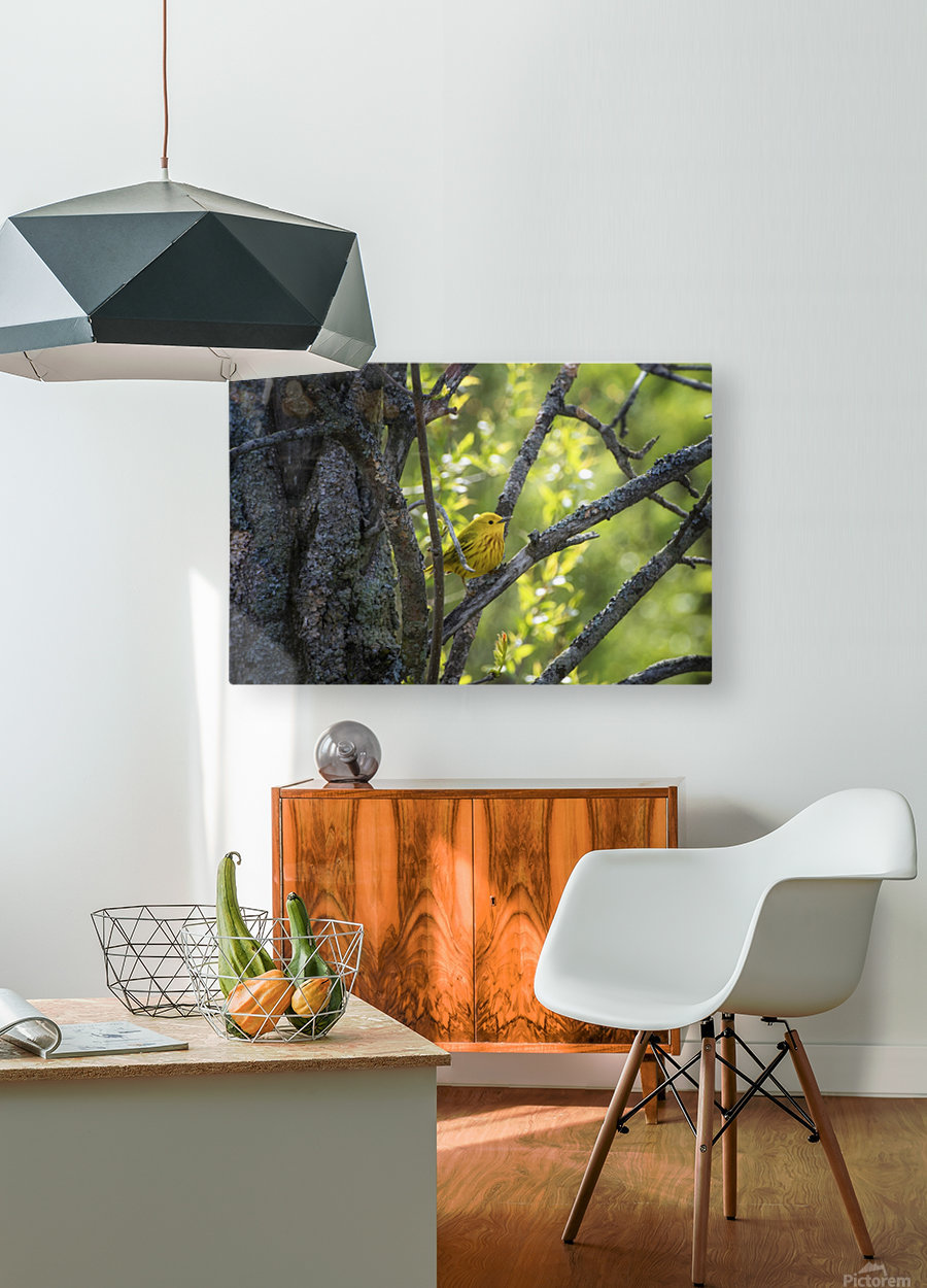 Ent  HD Metal print with Floating Frame on Back