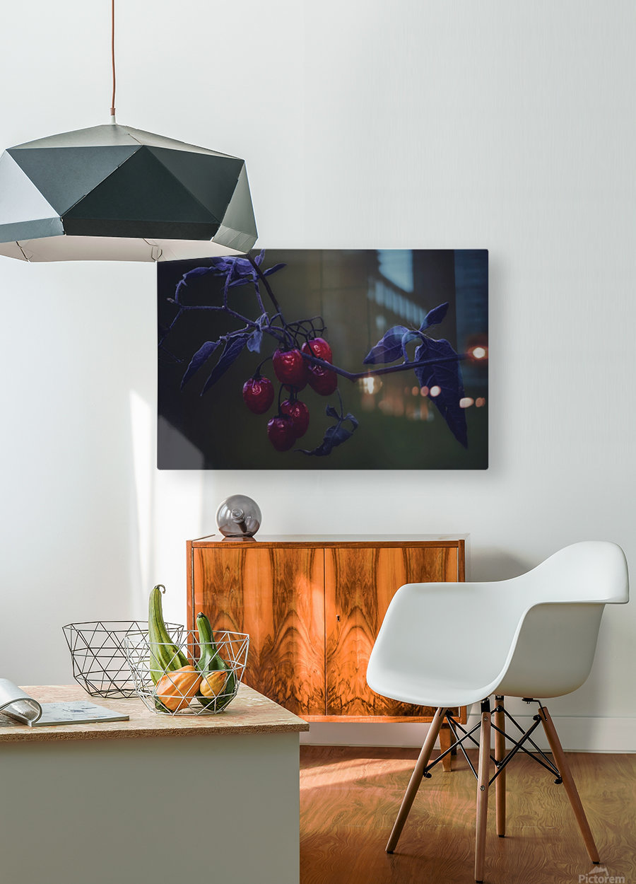 Nightshade  HD Metal print with Floating Frame on Back