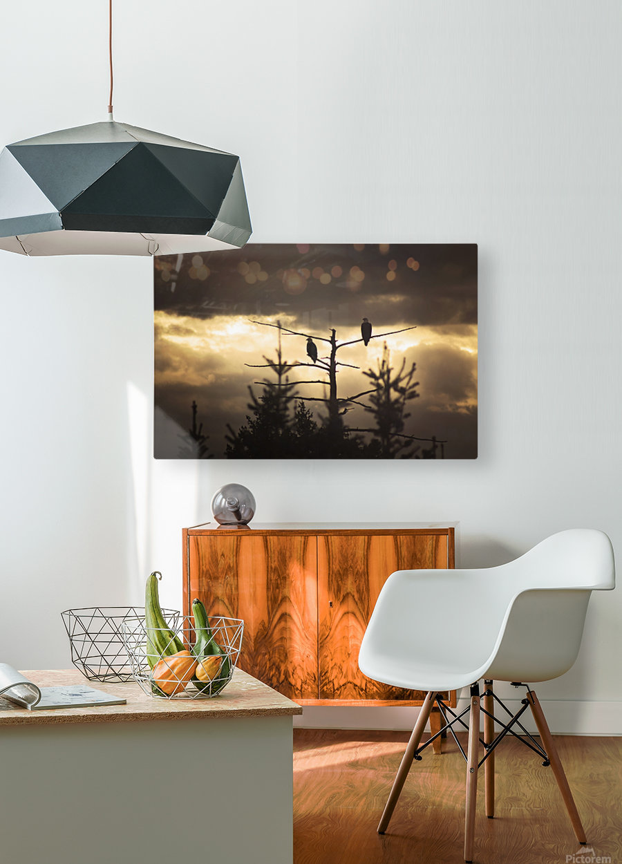 Seeing Double  HD Metal print with Floating Frame on Back