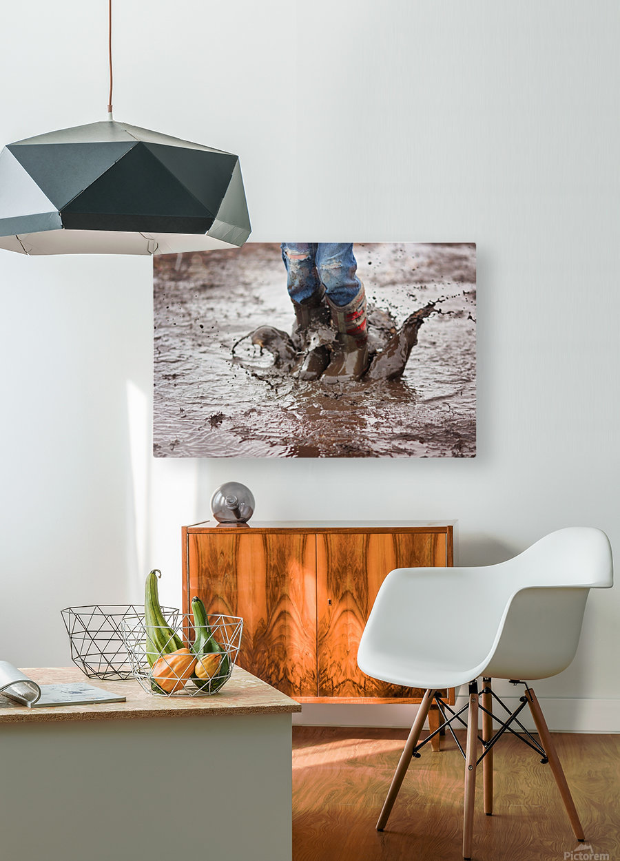 Simple Fun  HD Metal print with Floating Frame on Back