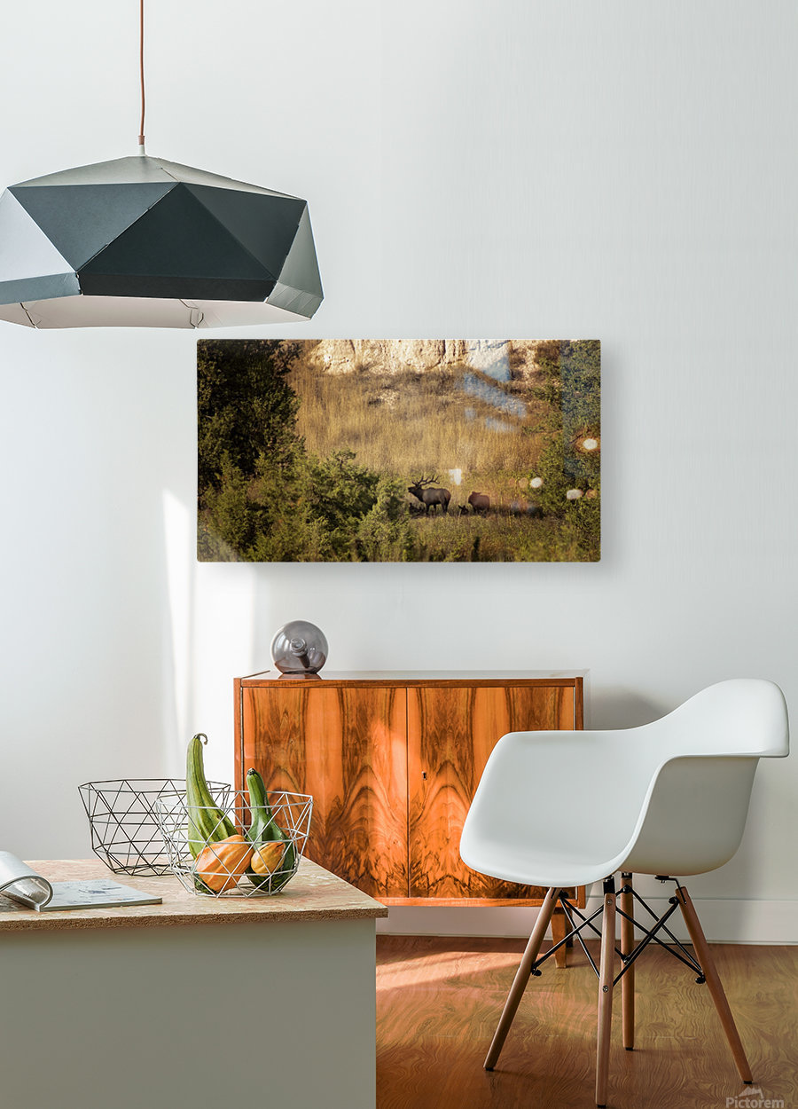 A Bugle For You  HD Metal print with Floating Frame on Back