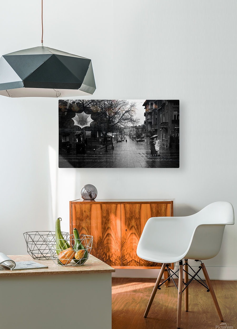 Rainy  HD Metal print with Floating Frame on Back
