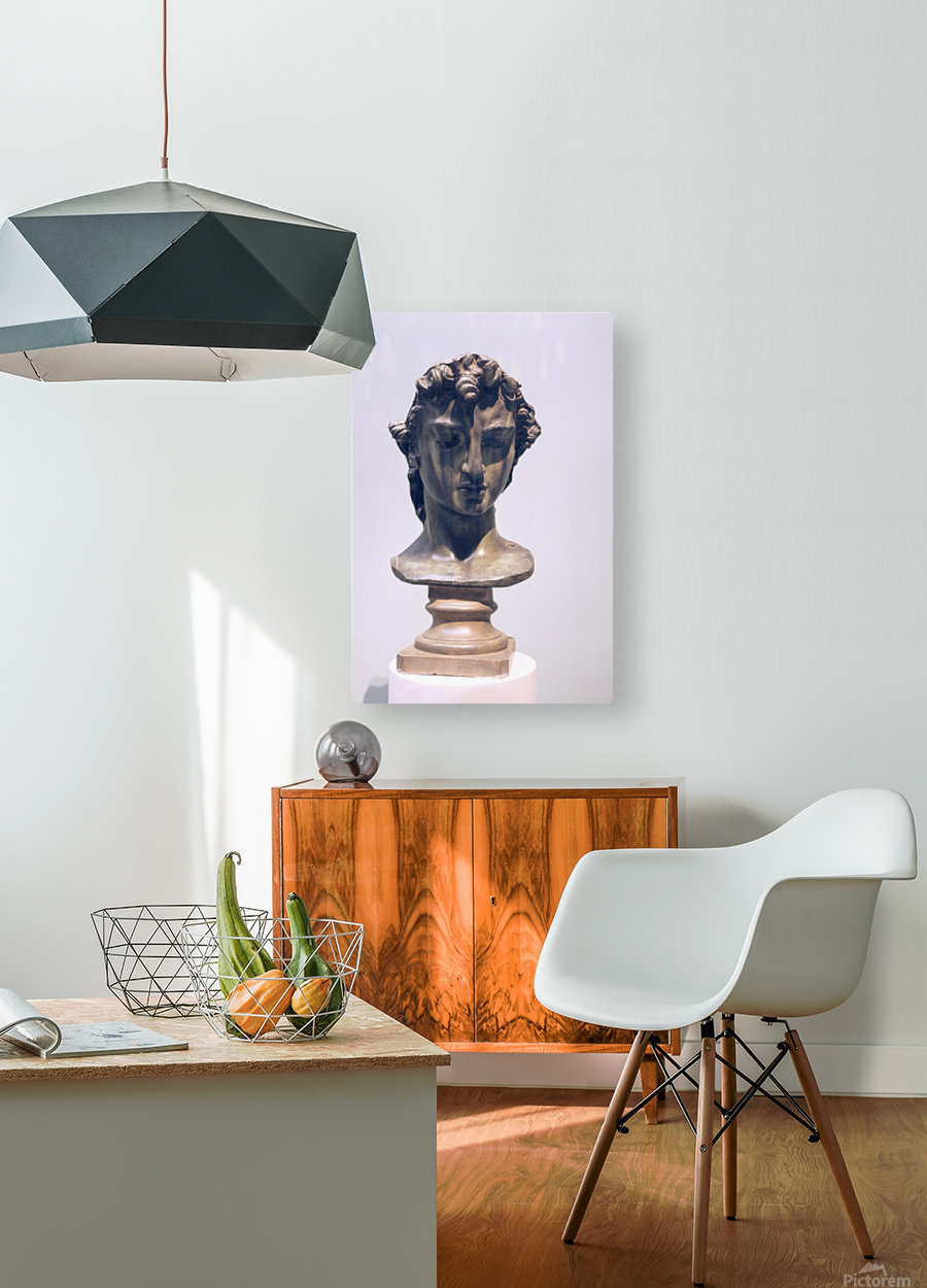 Head of Perseus  HD Metal print with Floating Frame on Back