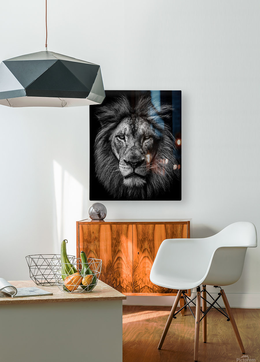 A Lion in Black & White  HD Metal print with Floating Frame on Back