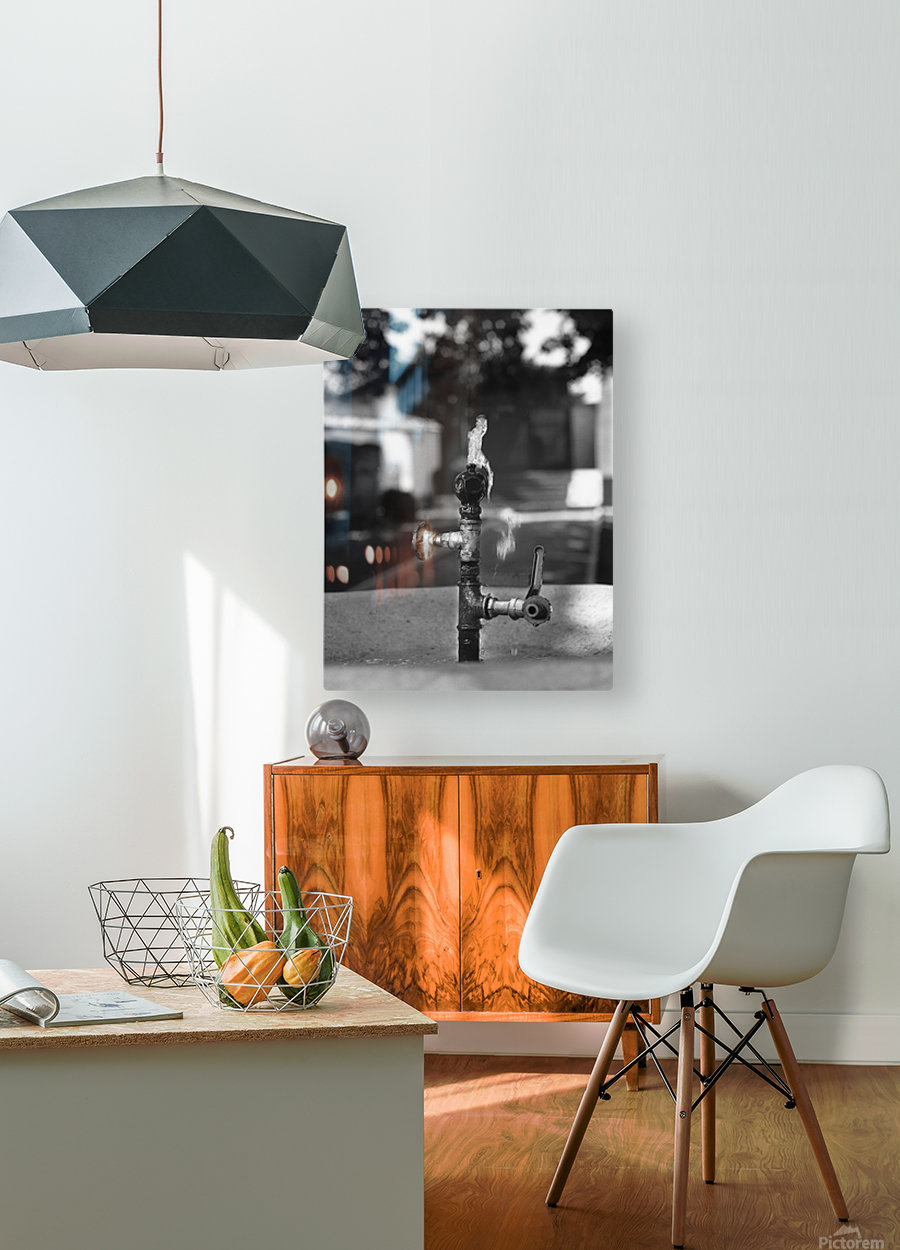 City Park Faucet  HD Metal print with Floating Frame on Back