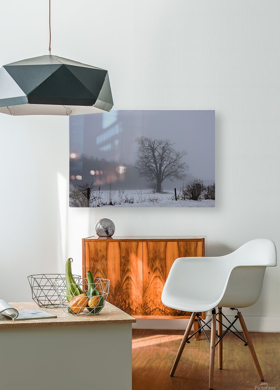 Tree in the Mist  HD Metal print with Floating Frame on Back