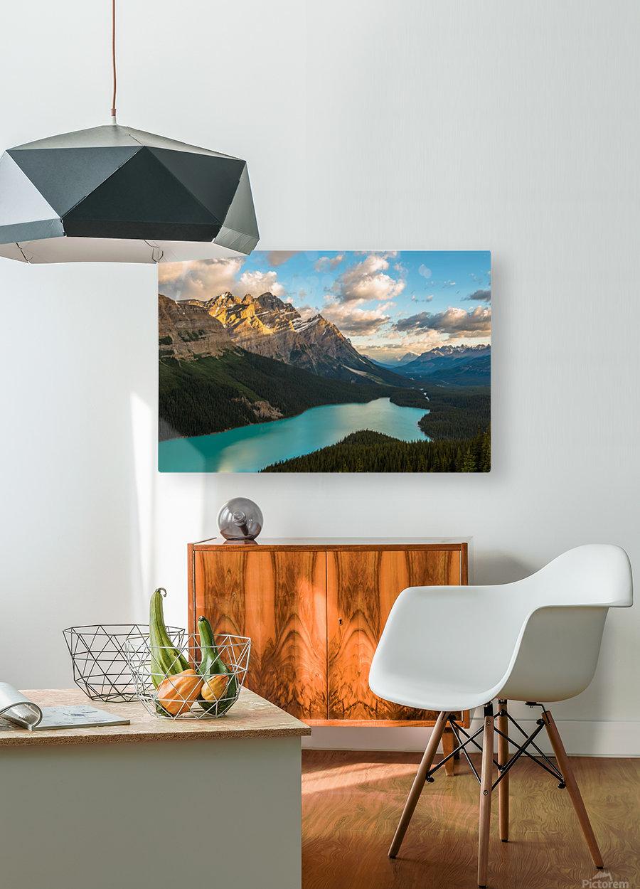 Peyto Lake 2  HD Metal print with Floating Frame on Back