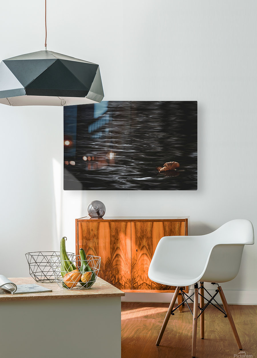 Aqueous Autumn   HD Metal print with Floating Frame on Back