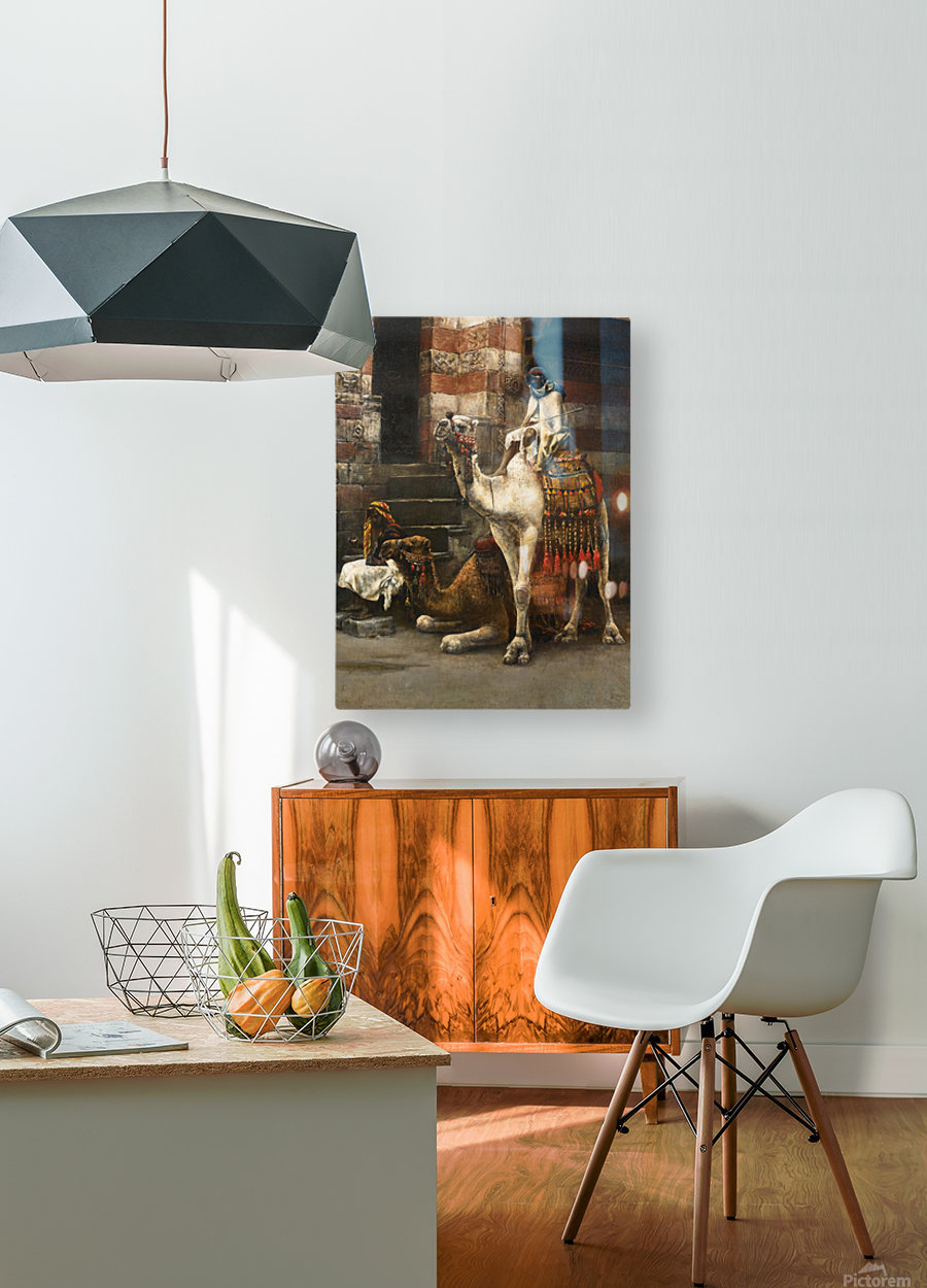 Camels on Cairo street  HD Metal print with Floating Frame on Back