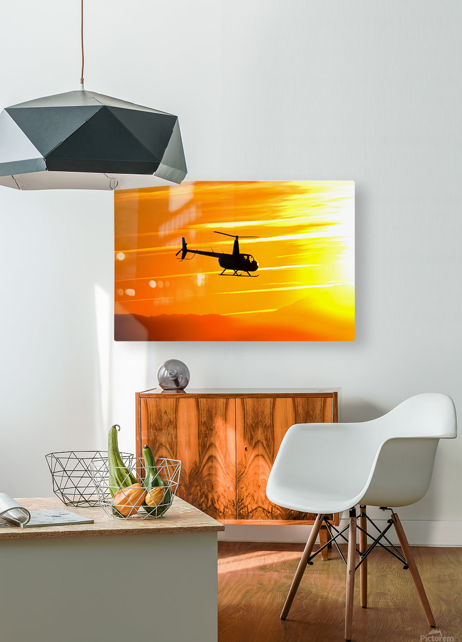 How the Wind Blew Down  HD Metal print with Floating Frame on Back