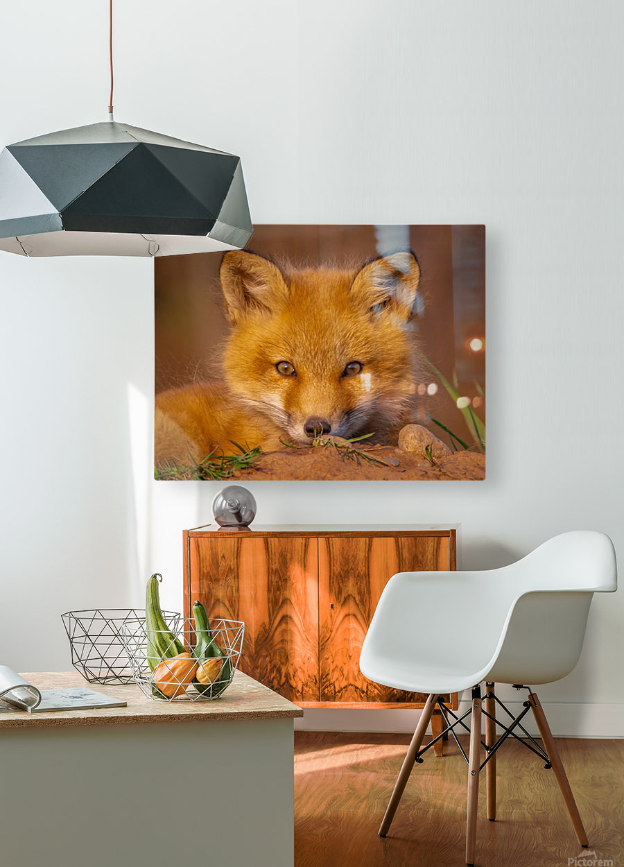 Life begins  HD Metal print with Floating Frame on Back