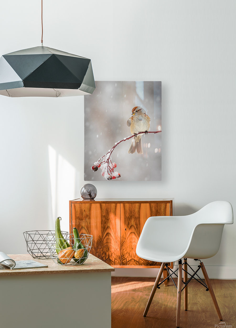 Subtle beauty  HD Metal print with Floating Frame on Back