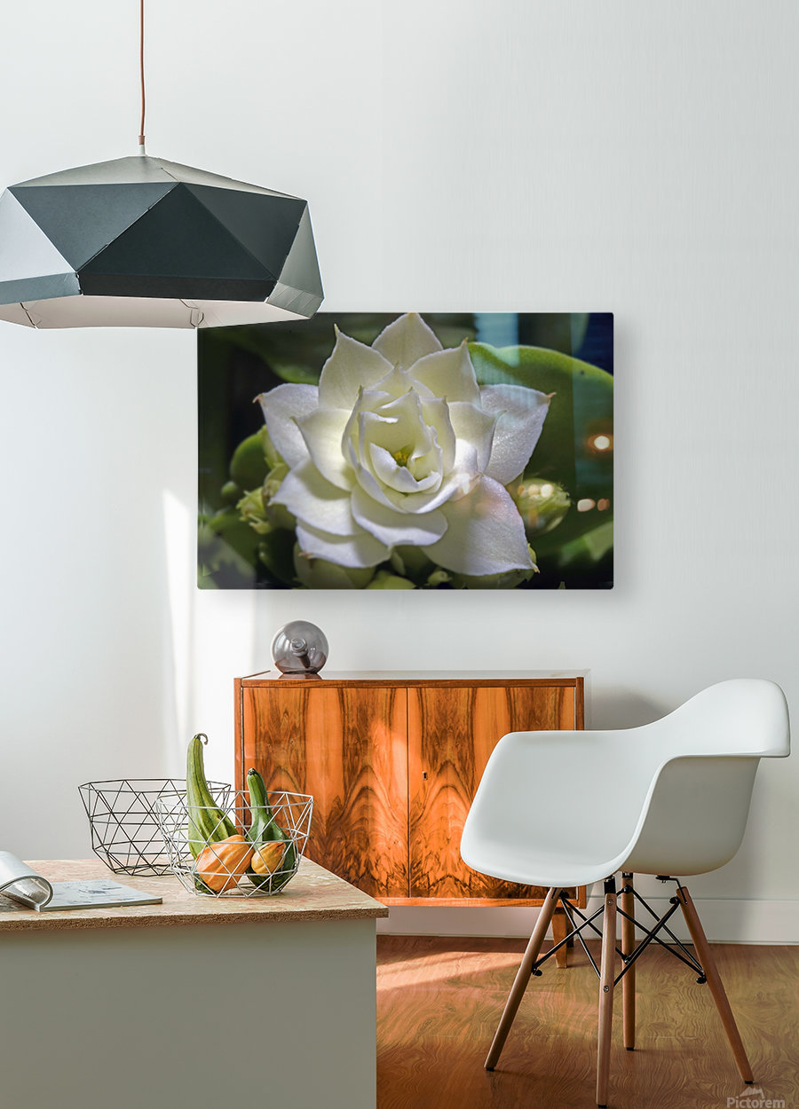 Serein  HD Metal print with Floating Frame on Back