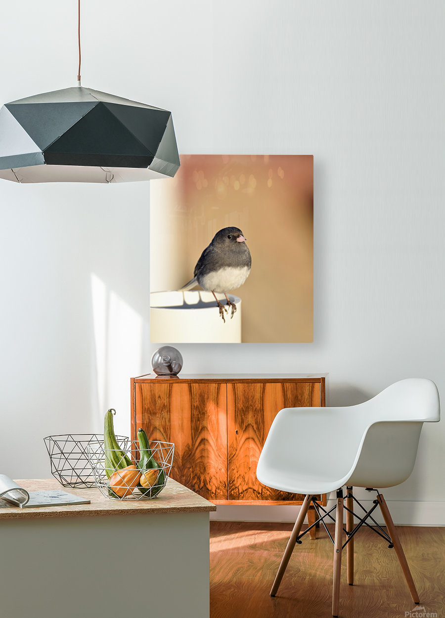 Pause soleil  HD Metal print with Floating Frame on Back