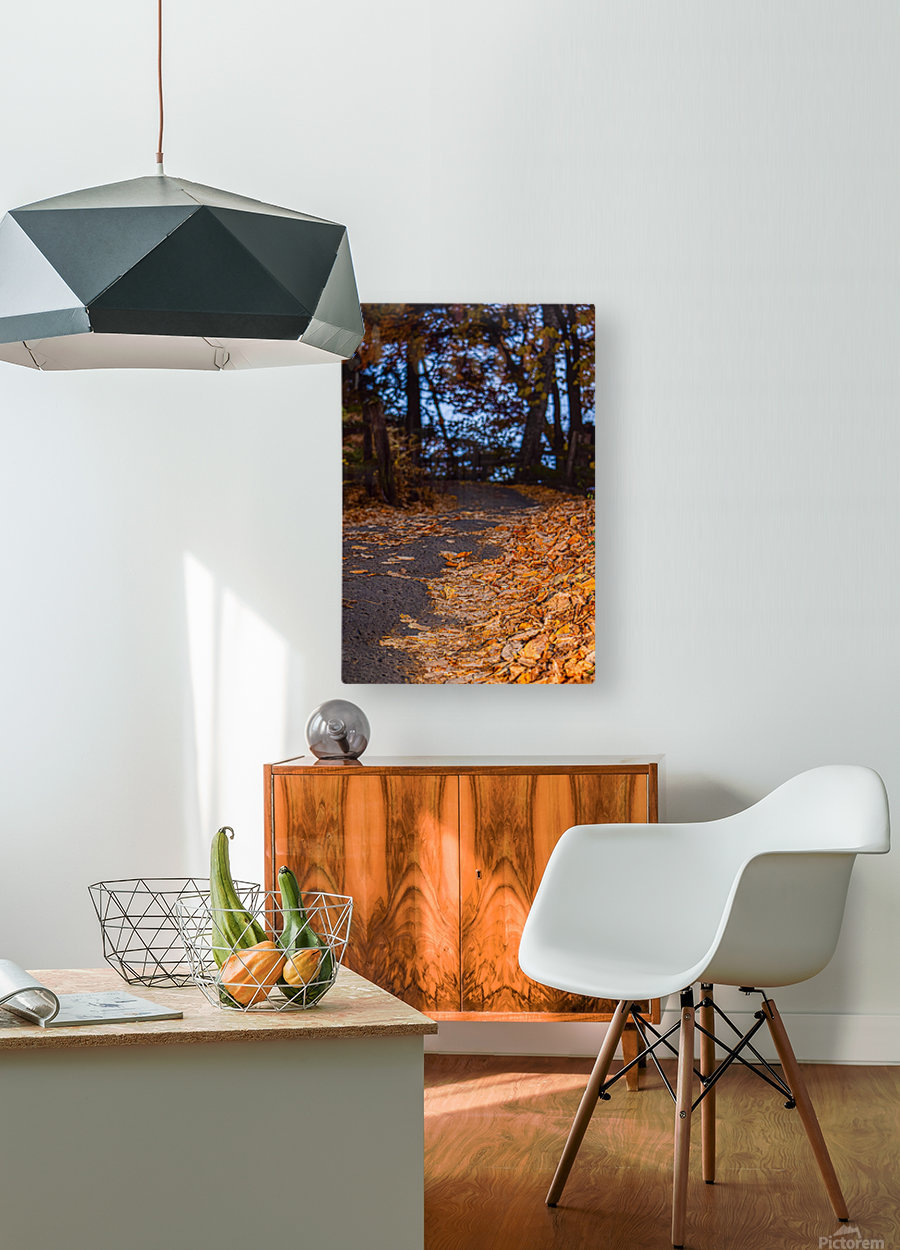 Au bout du chemin  HD Metal print with Floating Frame on Back