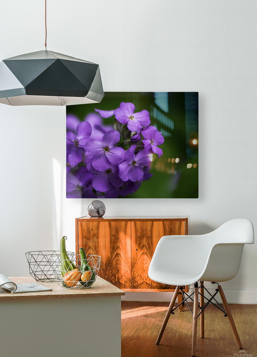 Magenta  HD Metal print with Floating Frame on Back