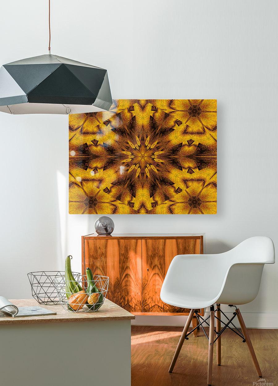 Spiritual Sunshine  31  HD Metal print with Floating Frame on Back