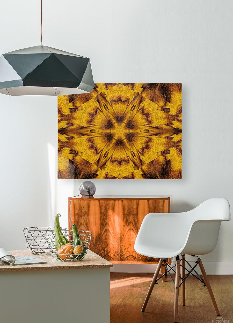 Spiritual Sunshine  39  HD Metal print with Floating Frame on Back