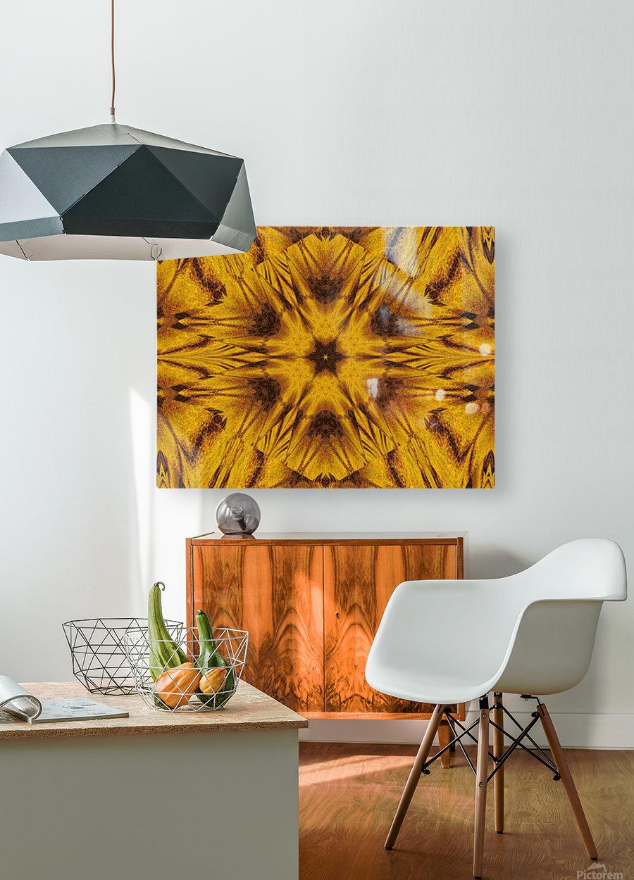 Spiritual Sunshine  42  HD Metal print with Floating Frame on Back