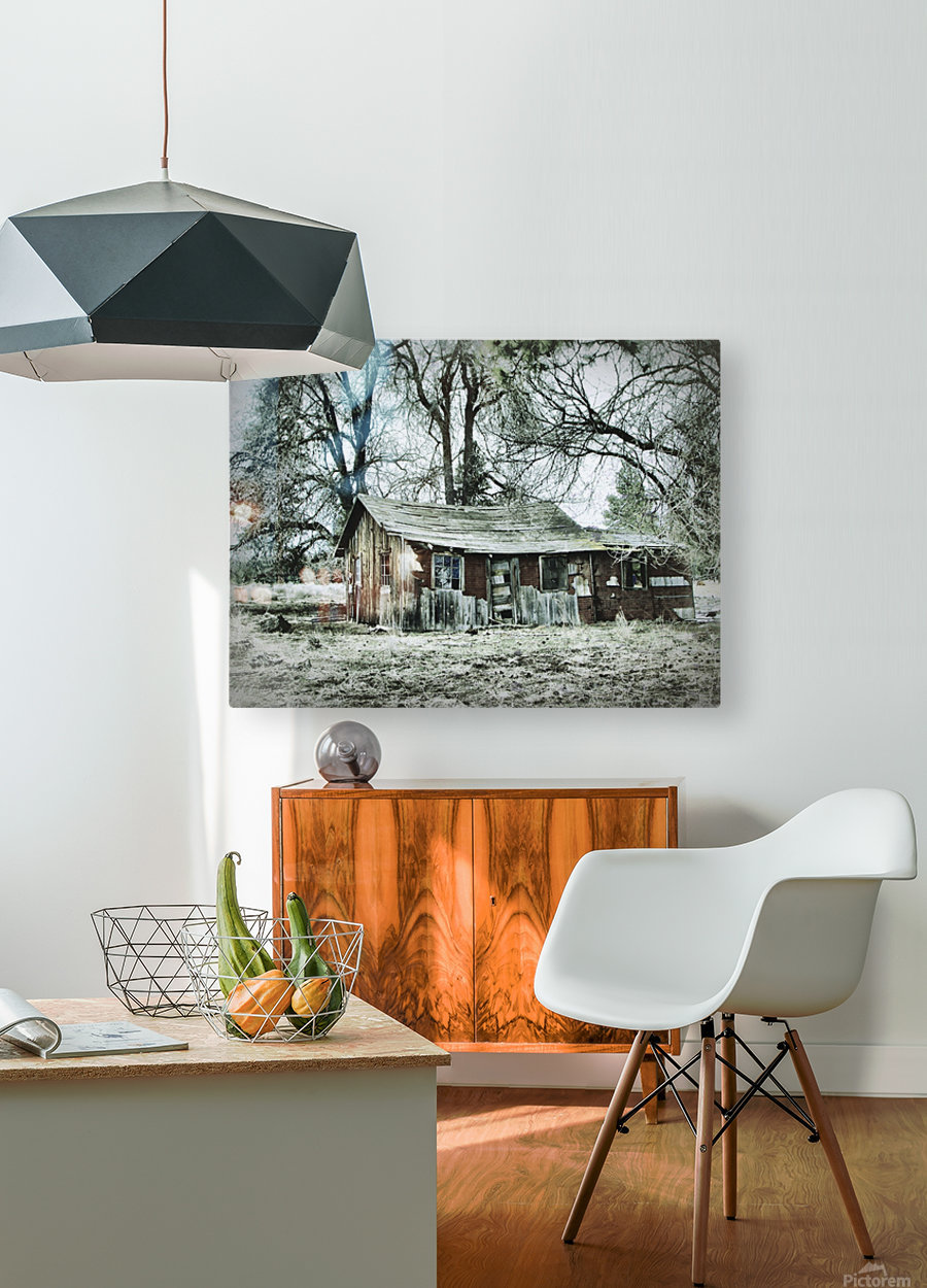 Abandoned Homestead  HD Metal print with Floating Frame on Back