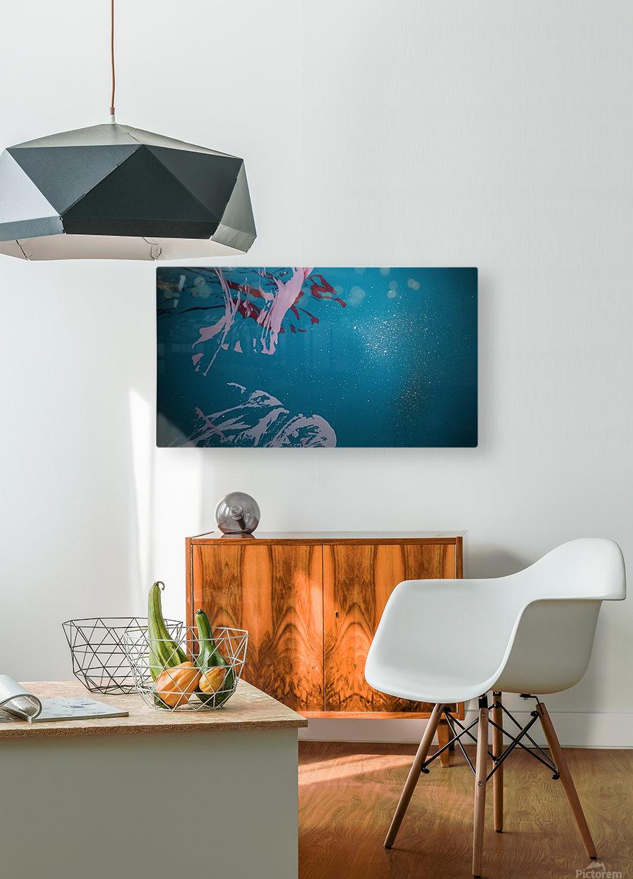KIMG4117  HD Metal print with Floating Frame on Back