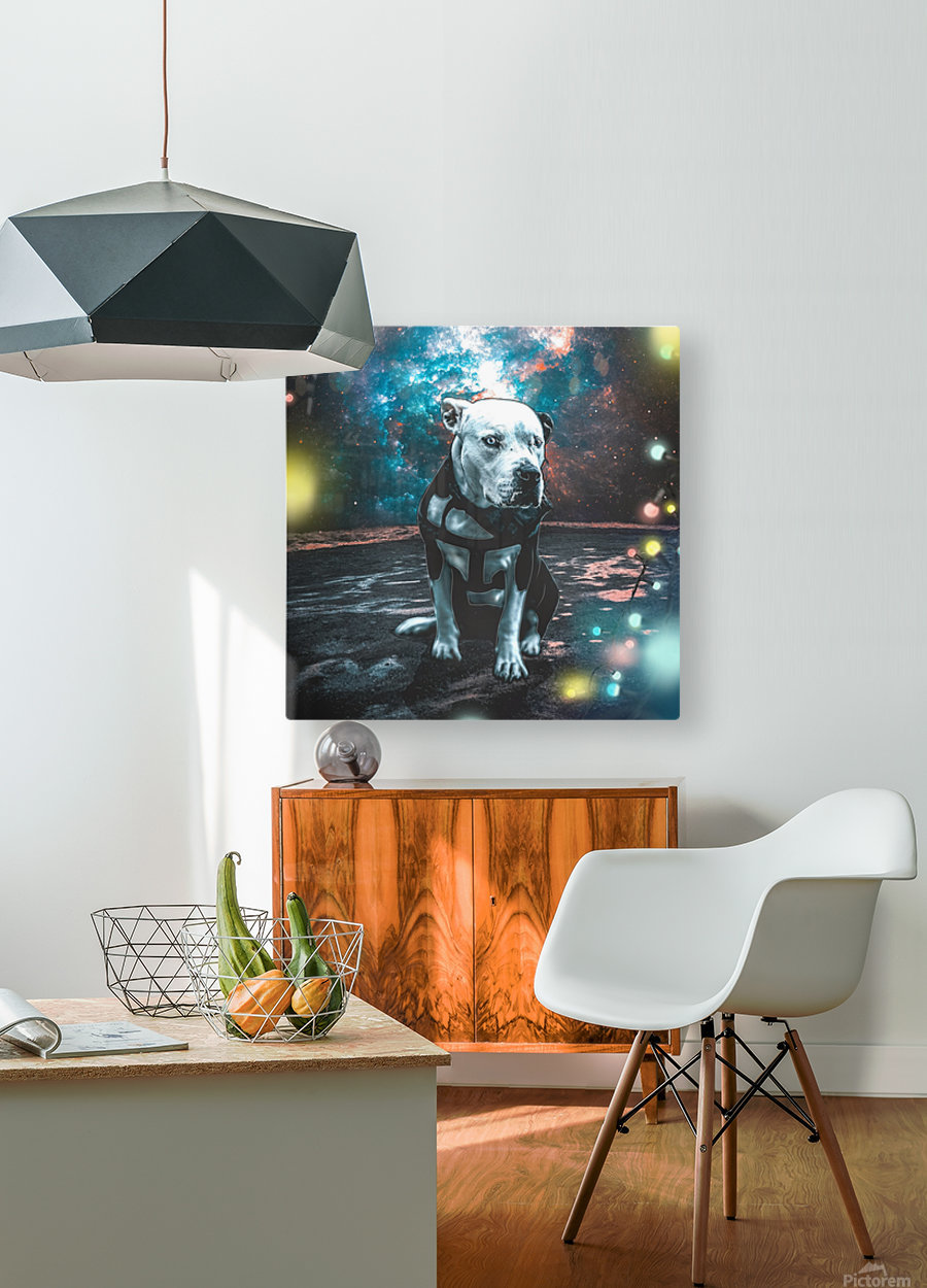 cosmos background space dog  HD Metal print with Floating Frame on Back