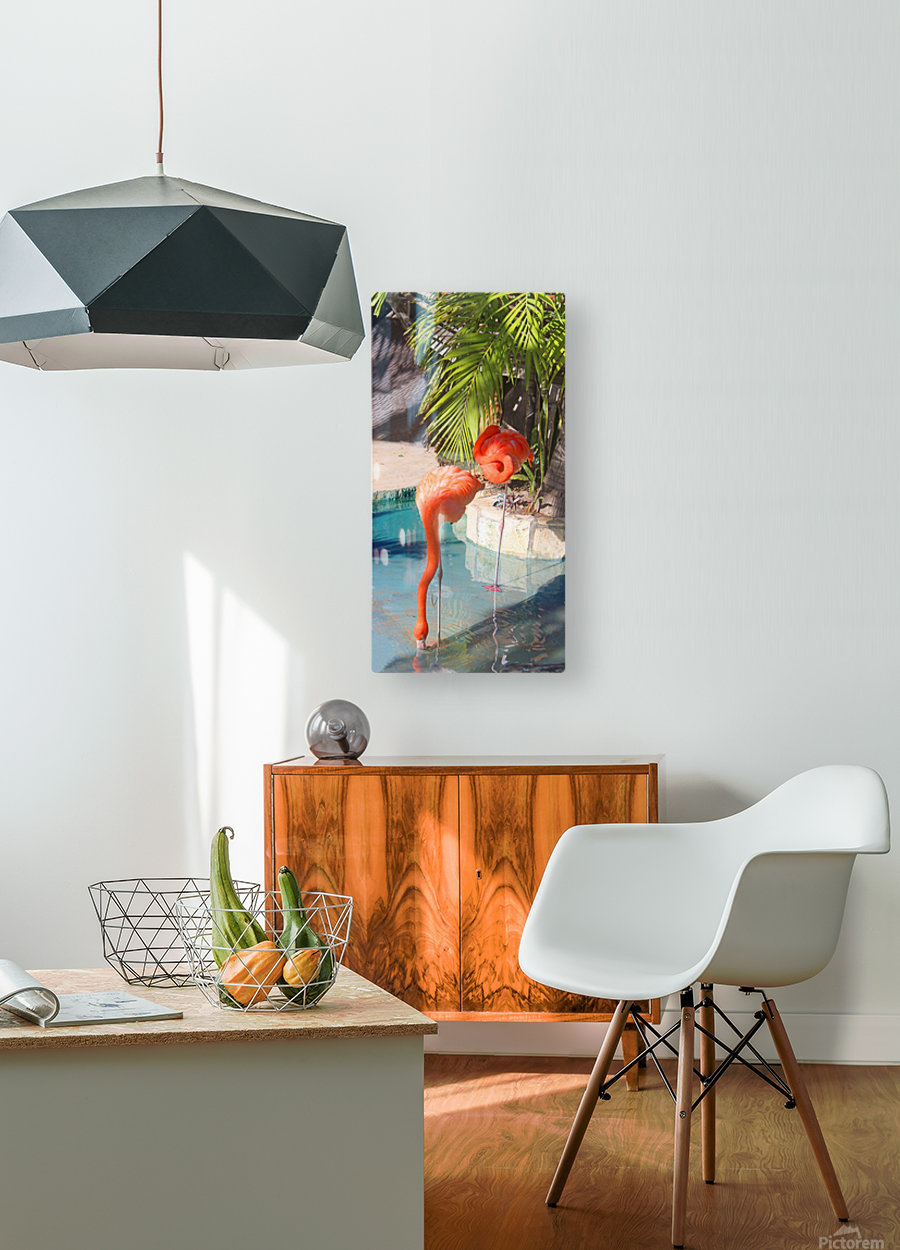 Living the Life  HD Metal print with Floating Frame on Back