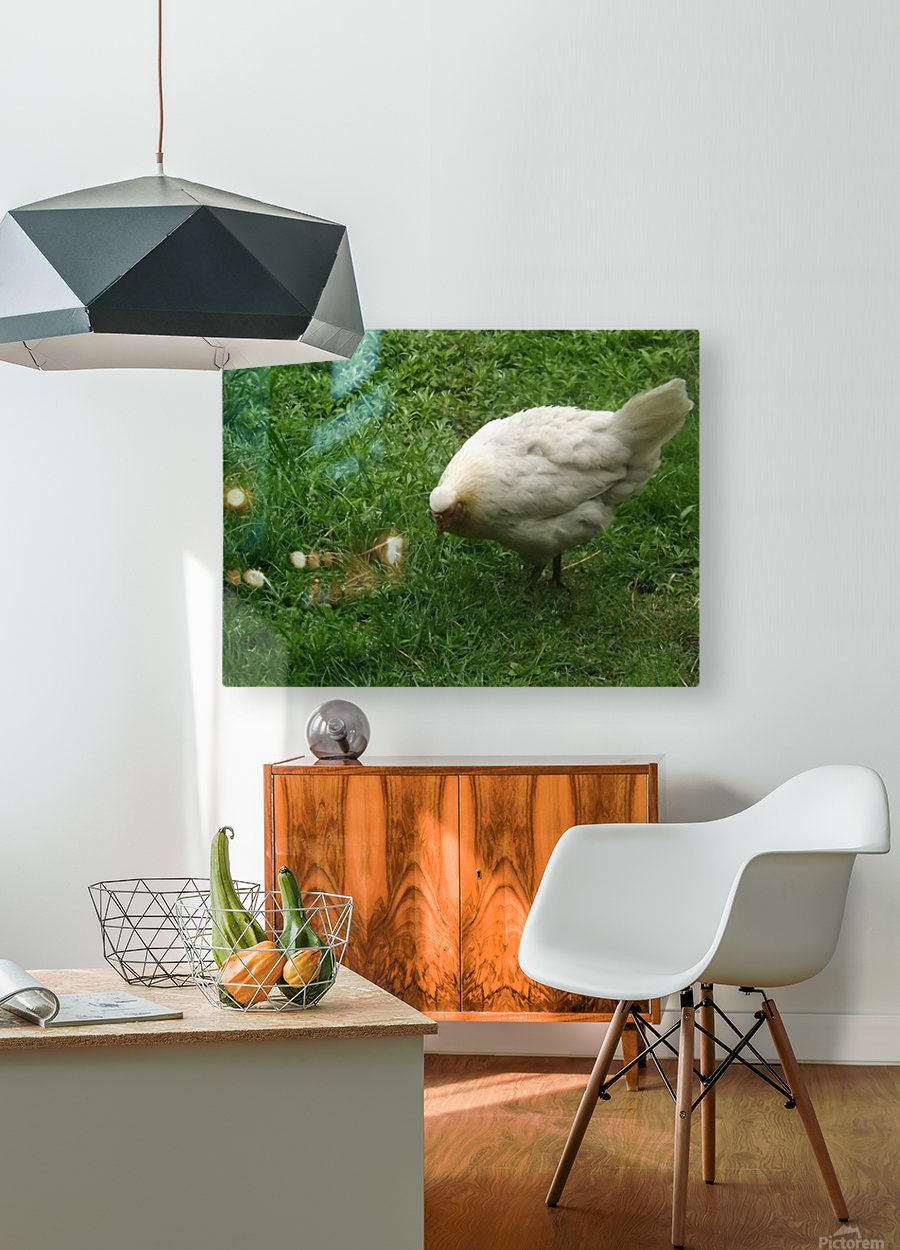 pics 132  HD Metal print with Floating Frame on Back