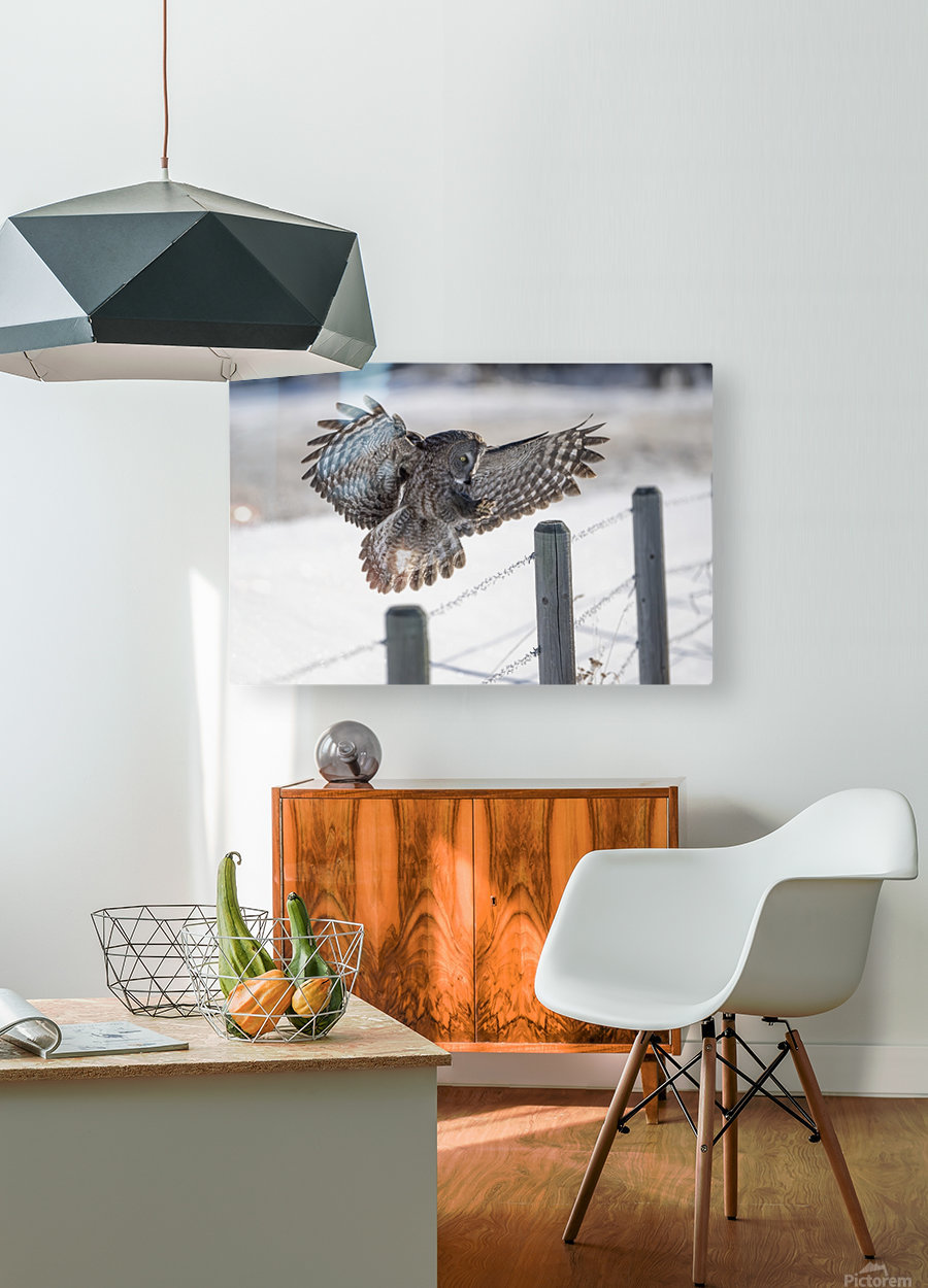 Keep Your Eye On The Target  HD Metal print with Floating Frame on Back