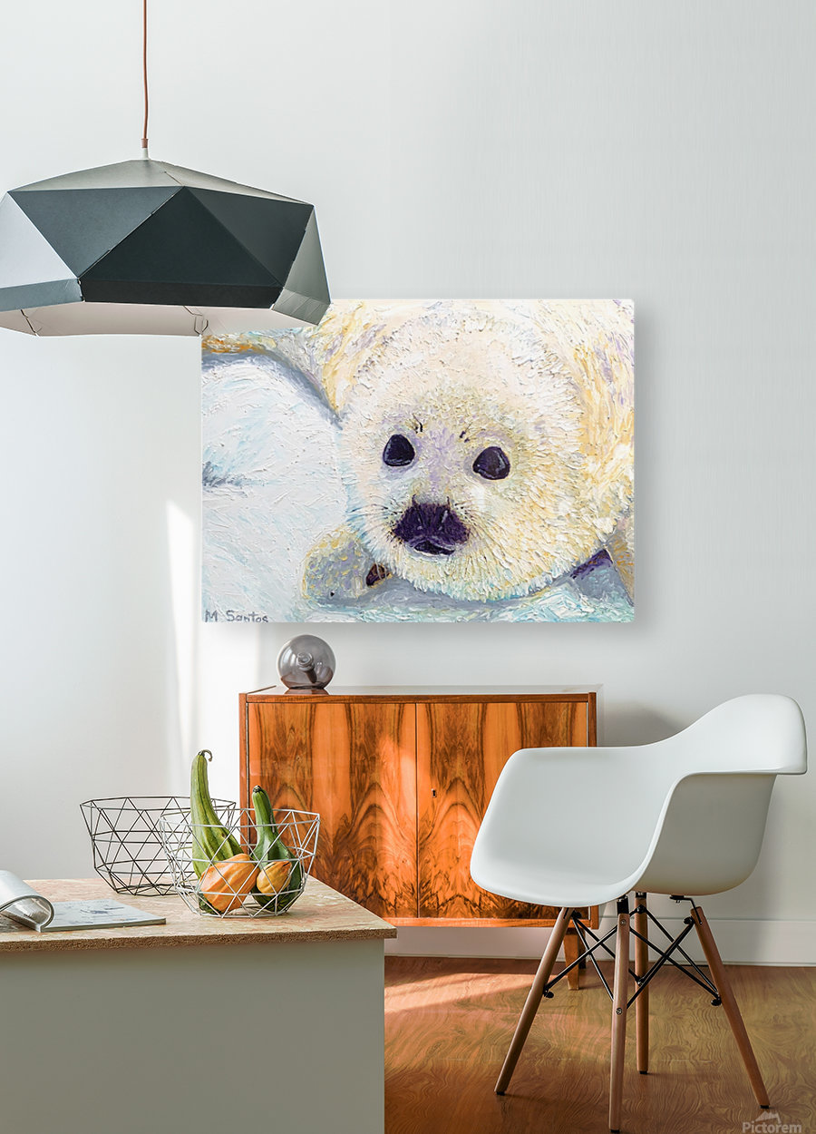 Seal Pup Closeup  HD Metal print with Floating Frame on Back