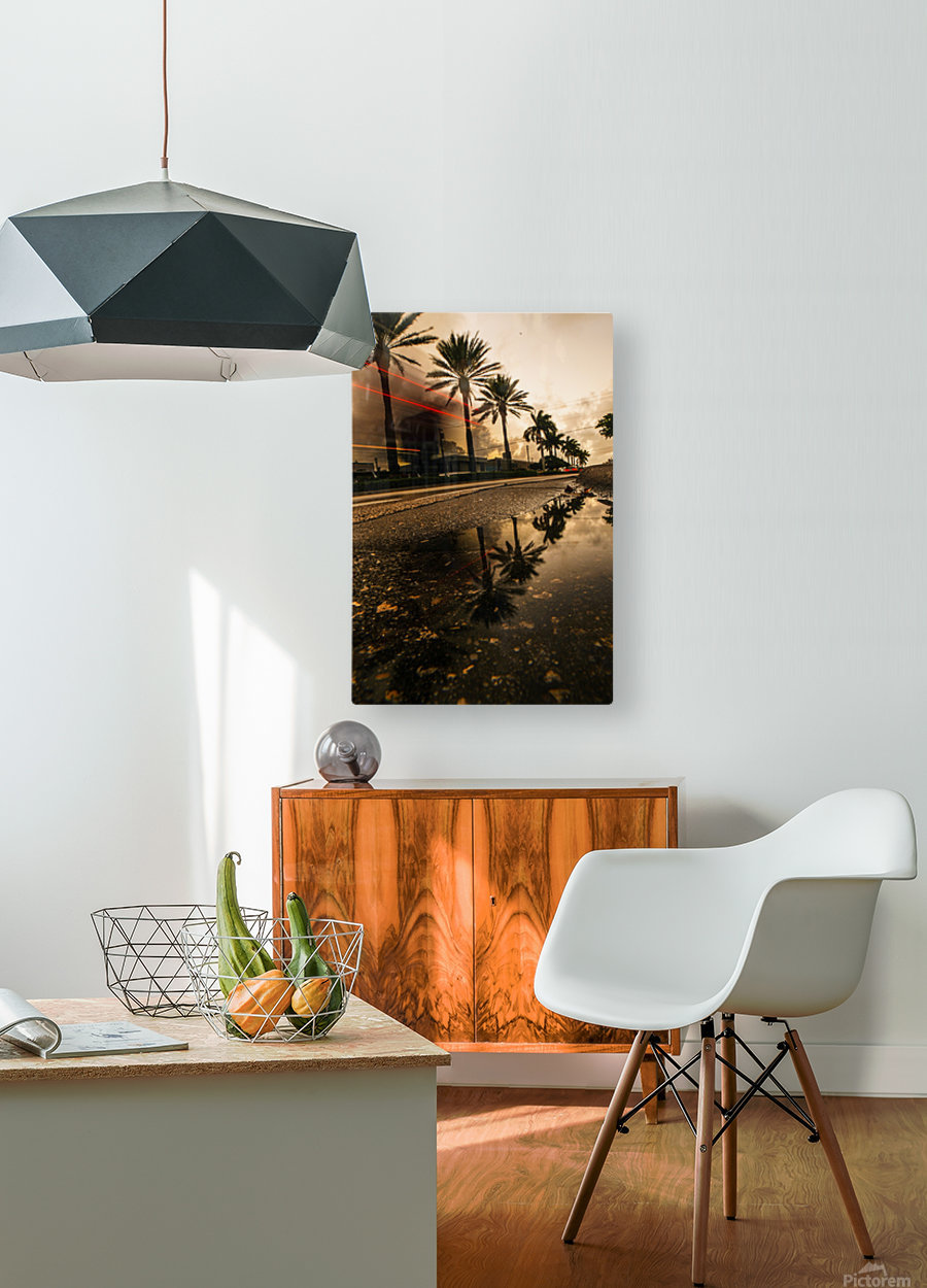 Palm Trails  HD Metal print with Floating Frame on Back