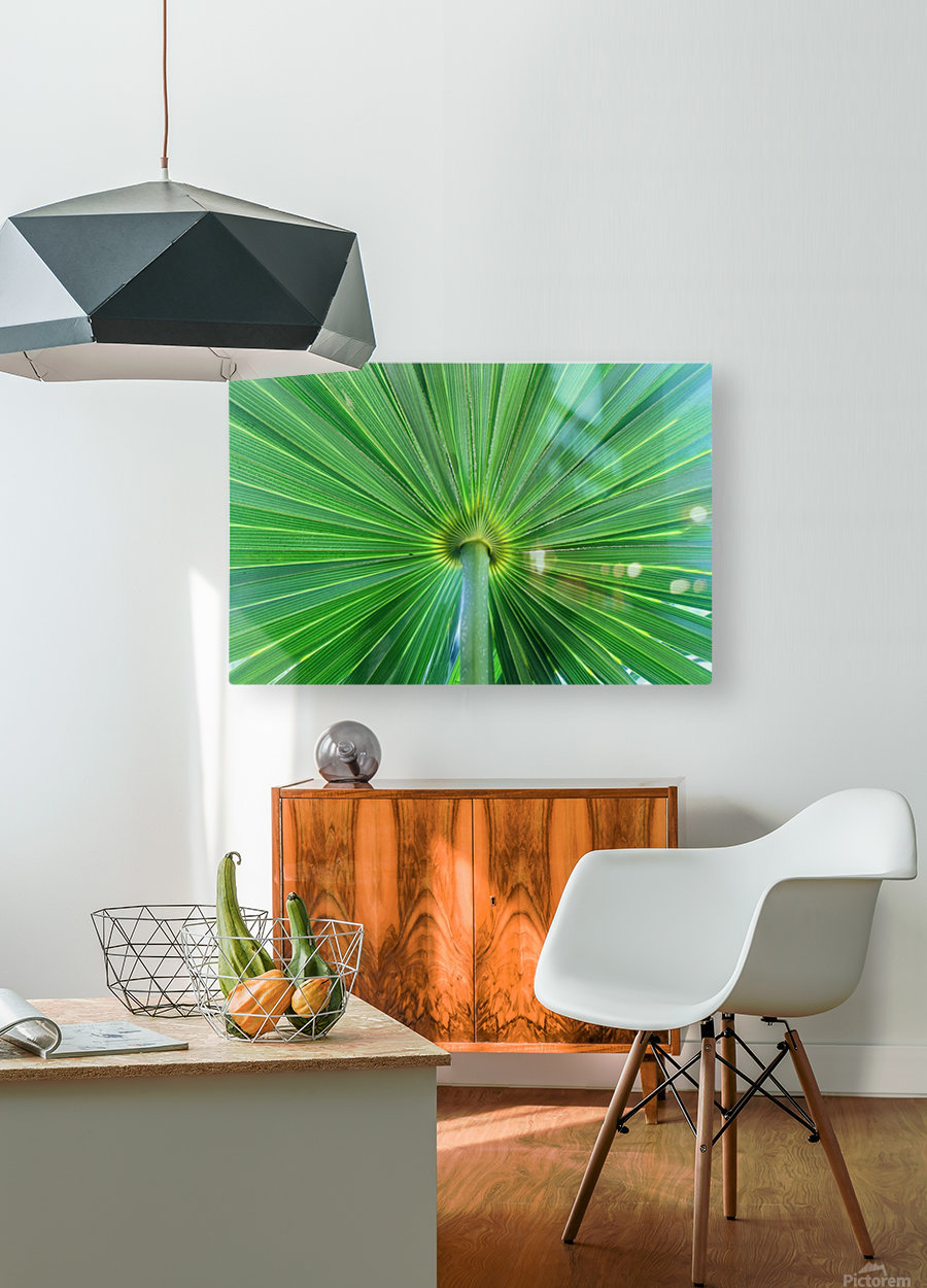 Leafy Green  HD Metal print with Floating Frame on Back