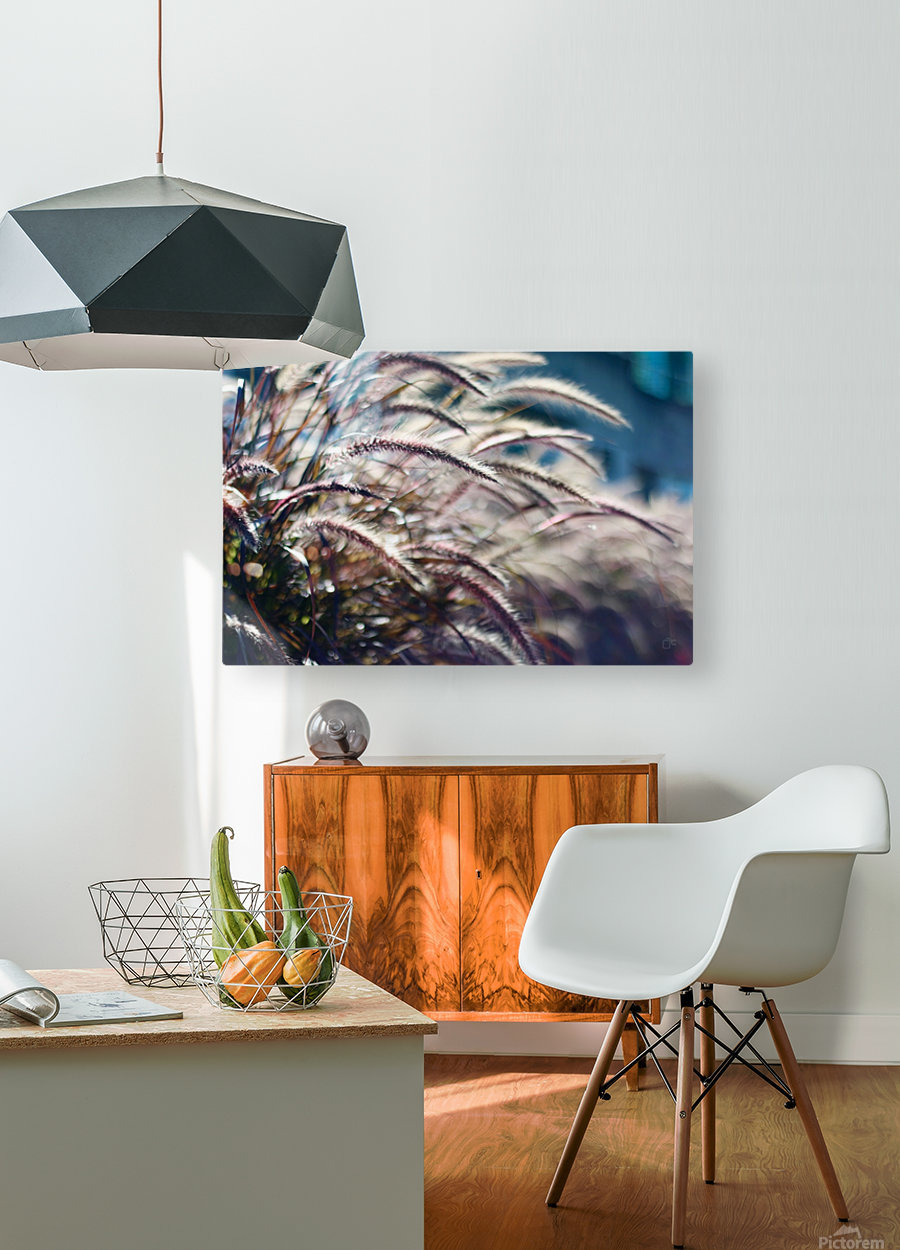 Plants  HD Metal print with Floating Frame on Back