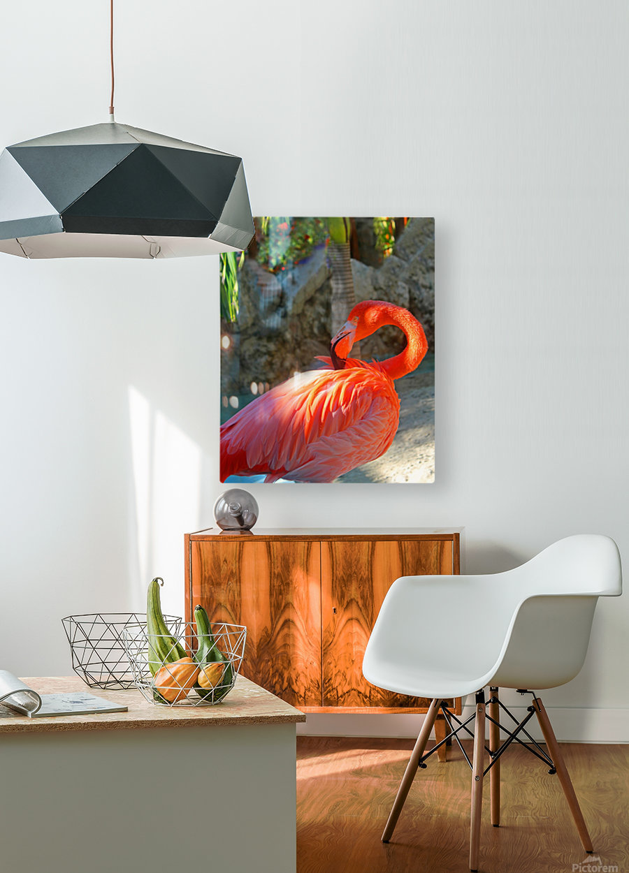 Enjoying the Sun  HD Metal print with Floating Frame on Back