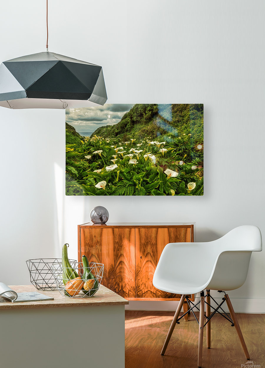 Life is Abundant  HD Metal print with Floating Frame on Back