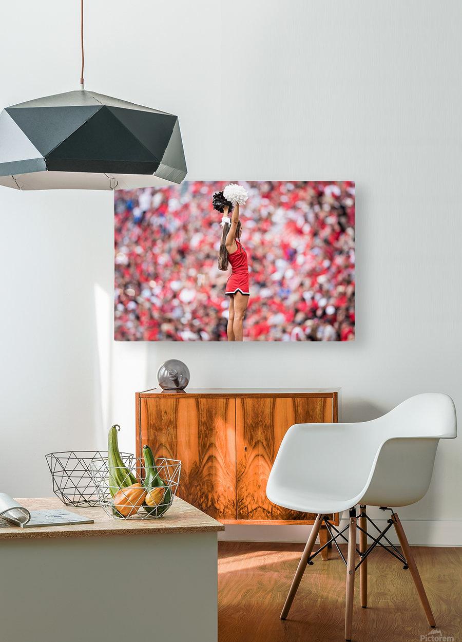 University of Georgia Football   Athens GA 3694  HD Metal print with Floating Frame on Back