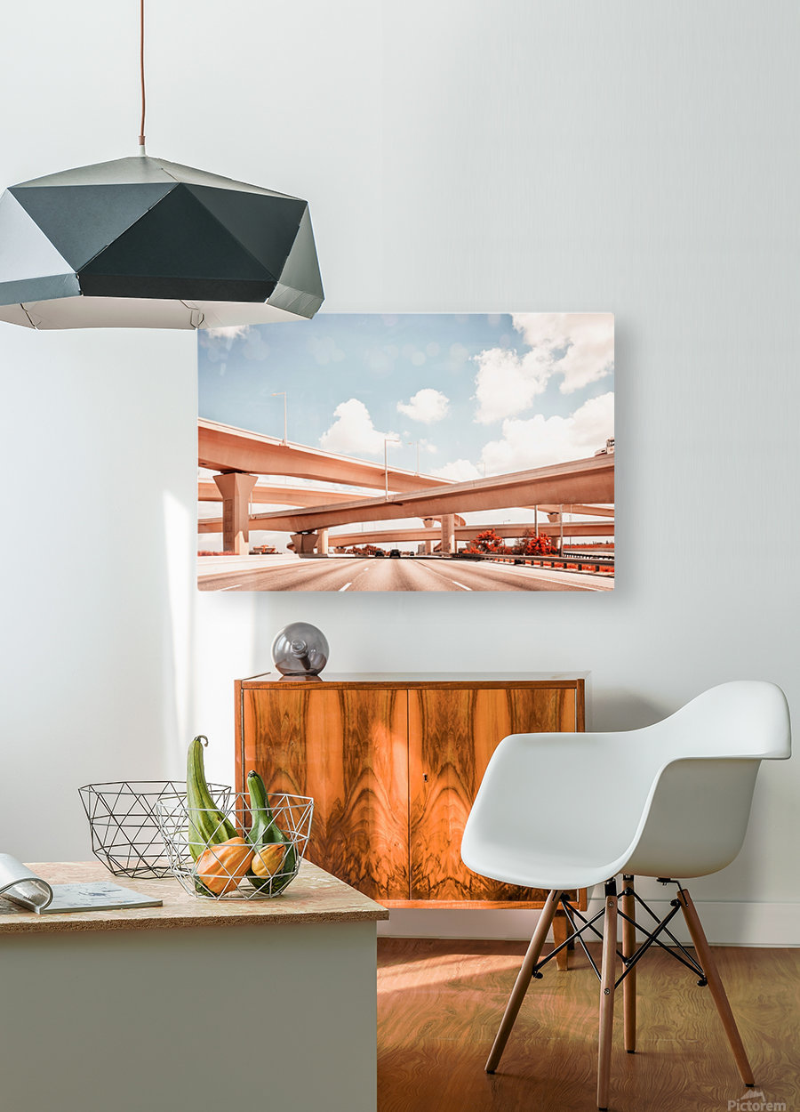 Dolphin Expressway 002  HD Metal print with Floating Frame on Back