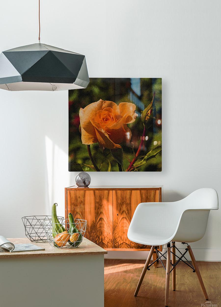 Orange Delight  HD Metal print with Floating Frame on Back